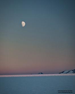 38. Lune