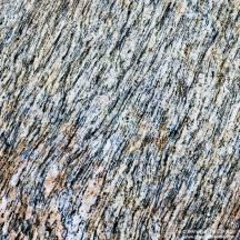 50. pierre gneiss