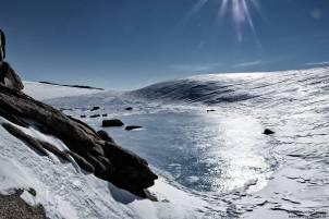 63. Pingvinane Sud